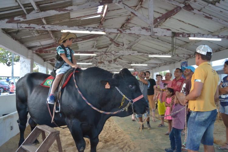 Expoece supera expectativa de público e de negócio, revela presidente da Associação dos Criadores do Ceará