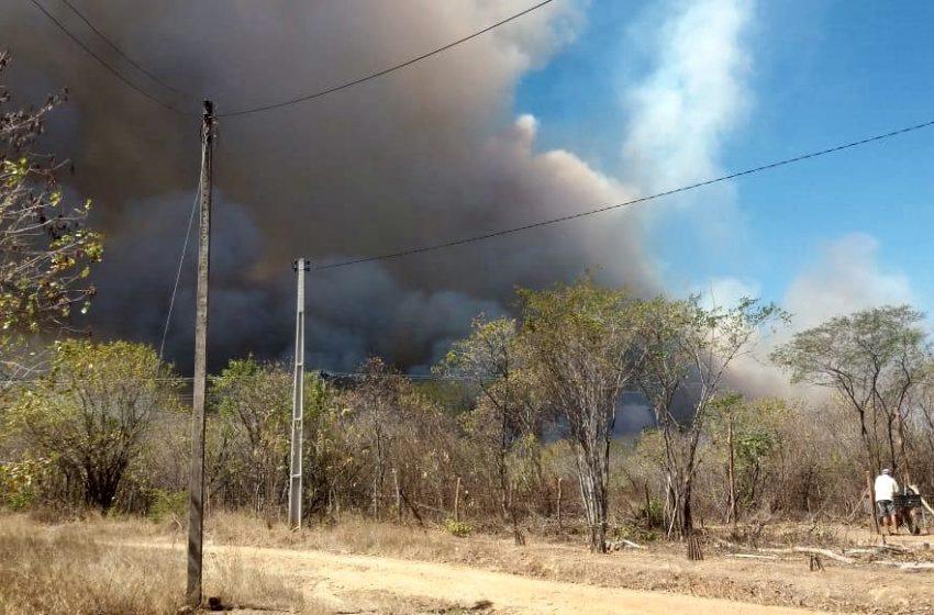 Há três dias, incêndio de grandes proporções atinge vegetação no interior de Santa Quitéria; confira imagens