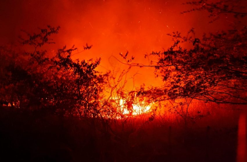 Bombeiros utilizam 5 mil litros de água para combater incêndio em vegetação registrado em Tabuleiro do Norte