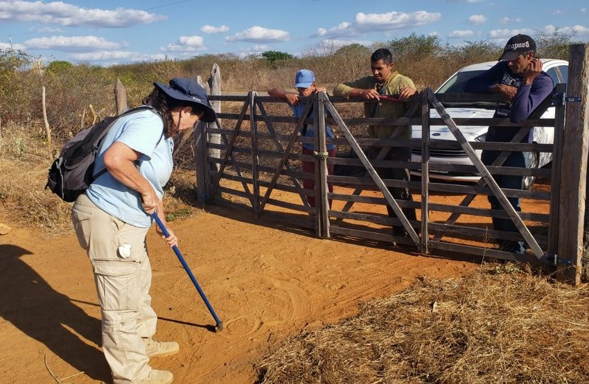 Pesquisadores e 'caçadores' internacionais disputam meteoritos após chuva de pedras no sertão pernambucano