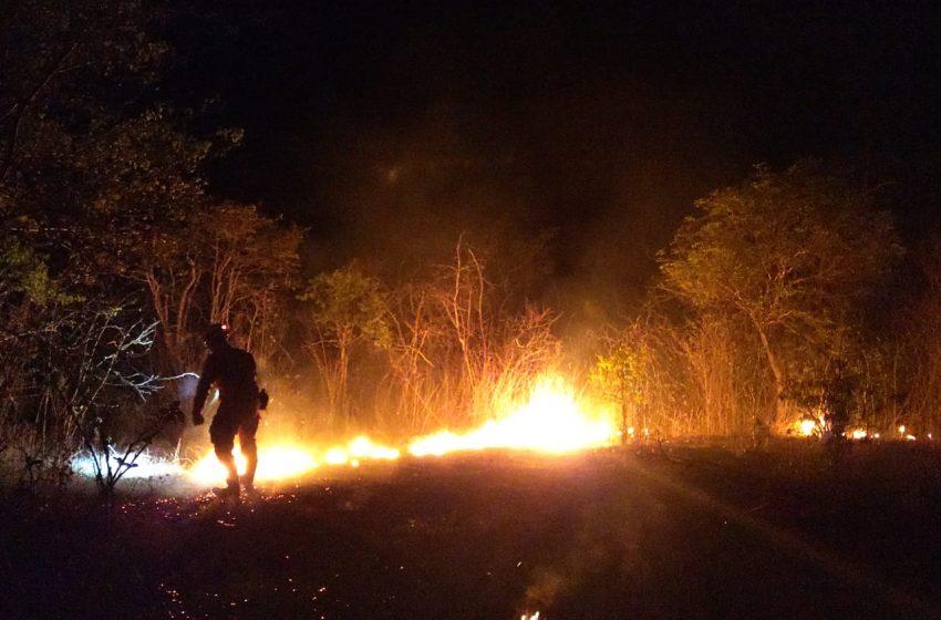 Bombeiros debelam incêndio na vegetação em Hidrolândia